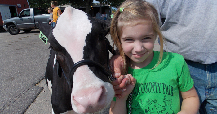 "Danielle Tank, of New London, participated in the Lil' Shaver Calf Show Buds with ""Pearl."""