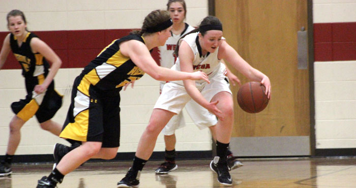 Weyauwega-Fremont's Alyssa Goode steals the ball from Rosholt's Taylor Kaminski. Goode had a game-high 27 points Feb. 23. Greg Seubert Photo