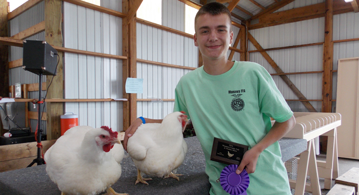 Grand champion roosters were exhibited by Andrew Zirbel, of New London. Jane Myhra Photo