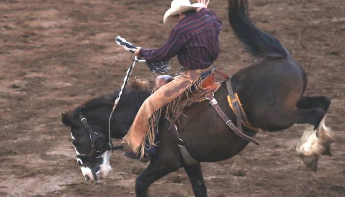 Dawson Jandreau spurs his horse during the saddle bronc riding.
